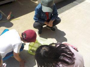 児童館のお庭にお友だちにが遊びに来てくれました!!